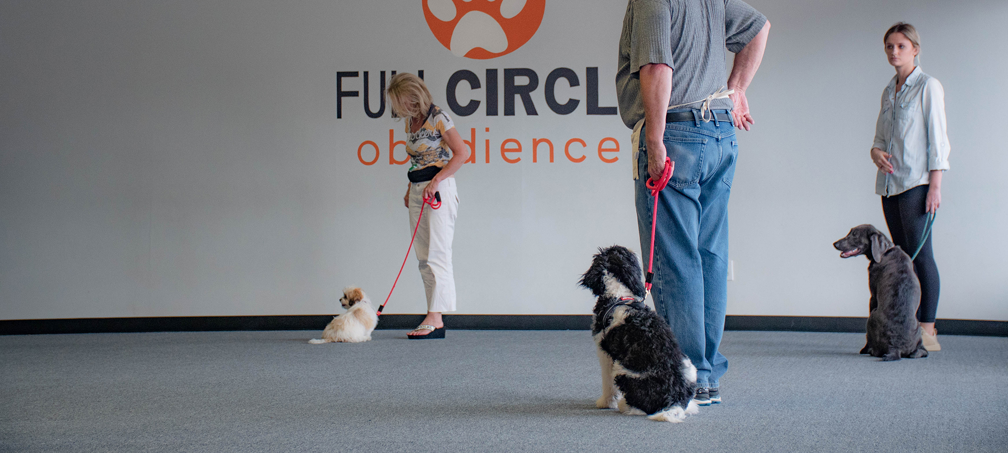 puppy class at full circle obedience